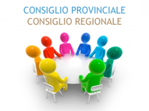 CONVOCAZIONE CONSIGLIO REGIONALE & PROVINCIALE AVA