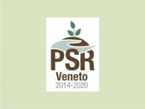 PSR VENETO BANDI 2015